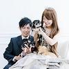 プロによる犬の撮影…の画像