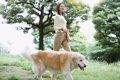 犬の飼い主資格制度…の画像