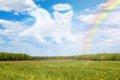 天国にいる愛犬への…の画像