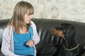 愛犬との主従関係チ…の画像