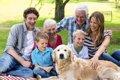 人と犬が本当の家族…の画像