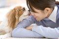 犬が飼い主の顔を舐…の画像