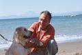 犬がかかりやすい病…の画像