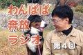 犬のおべんきょう♪わ…の画像
