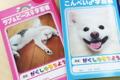 犬ノート おすすめ…の画像