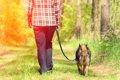 犬に散歩が必要な理…の画像