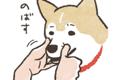 LINEスタンプ「犬」1…の画像