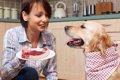 『食べ物』と『飼い…の画像