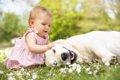 【実体験あり】愛犬…の画像