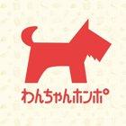 わんちゃんホンポニュース編集部画像