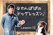 わんぱぱのドッグレッスン♪ Lesson12〜トイレトレーニング基本編の巻〜