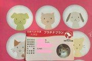 日本ペット共済の口コミ・評判