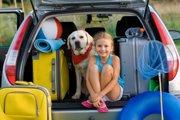 犬と行きたい観光地4選!関東近郊のおすすめスポット