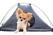 夏休みに活躍!犬用テントが優秀って話