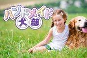 『第1回 犬部フェスタin浦安住宅公園』が開催されます!