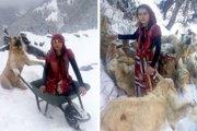 雪深い丘の中からヤギ達を救った少女と犬