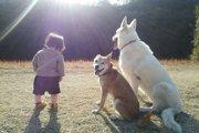 人と犬の関係は十人十色!~あなたと愛犬の関係は世界にひとつ~