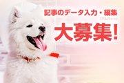わんちゃんホンポでのアルバイトを大募集!!記事のデータ入力・編集業務