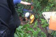コリー犬が約2mの深くて狭い泥穴に落下 消防隊員達の必死の救出劇