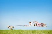 犬の散歩で伸縮性リードを使う5つのデメリット