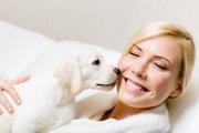 愛犬とのキスで注意したい3つのこと!