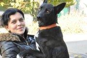 「元保護者に会いたい!」2週間かけて300㎞歩いた犬