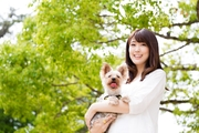 【FPCのペット保険】ダイソンのハンディクリーナーがもらえる!冬のWキャンペーン実施中