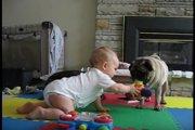 穏やかなおもちゃ争奪戦♪赤ちゃんとパグの遊びに癒される♡