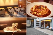 【兵庫・芦屋】G Cafe~おしゃれなカフェで愛犬と素敵な時間を~
