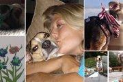 【感動】癌を乗り越えた老犬に「バケットリスト」を作り続けた飼い主