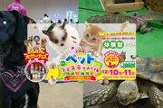 是非、また来年も行きたい!『札幌ペットフェスティバル』レポート