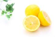 犬はレモンを食べても大丈夫!健康に良い理由とは?