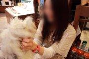 愛犬飼育管理士の資格取得と仕事について