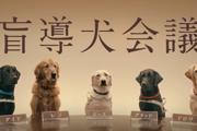 盲導犬が過ごしやすい世界へ…「盲導犬会議」に込めた願い(まとめ)