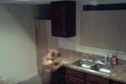 こんなとこから!?キッチンから脱走しようとするワンコが必死すぎ!