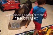少年のベッドタイムをお手伝いするシェパード犬が賢すぎる!!(まとめ動画)