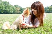 愛犬から「今まで以上に愛される」ための3つの方法