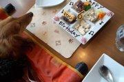 『しろいぬカフェ』は個室があるペットカフェ!充実のサービスで愛犬とまったり♪