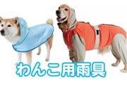 雨の日でも楽しく過ごそう♪オススメのわんこ用雨具