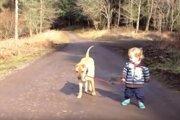 赤ちゃん思い♡赤ちゃんのペースに合わせてお散歩する優しいワンコ