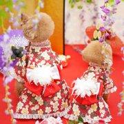 姫乃&蘭画像