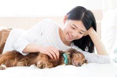 犬が床で寝る2つの…