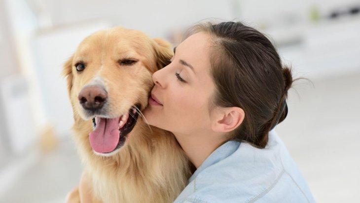 愛犬を癒してあげられる4つの方法