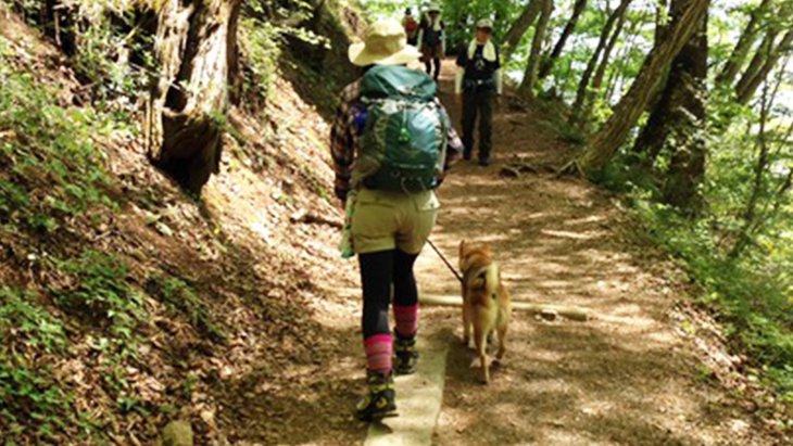 初夏の那須でアウトドアキャンプ&リゾートの良いとこどり旅!