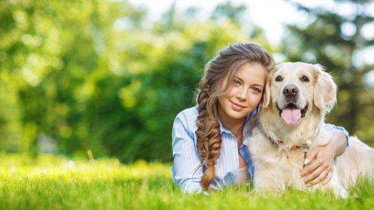 聴導犬ってどんな犬なの?その役割や仕事、抱えている課題とは