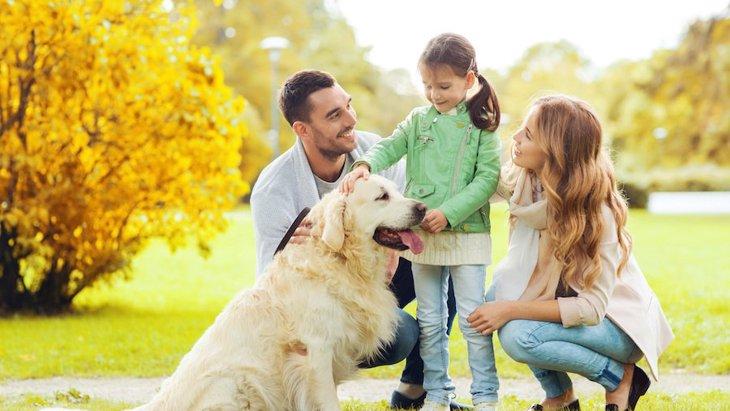 犬が「夫婦円満」をもたらす?ペットが家庭に与える良い影響