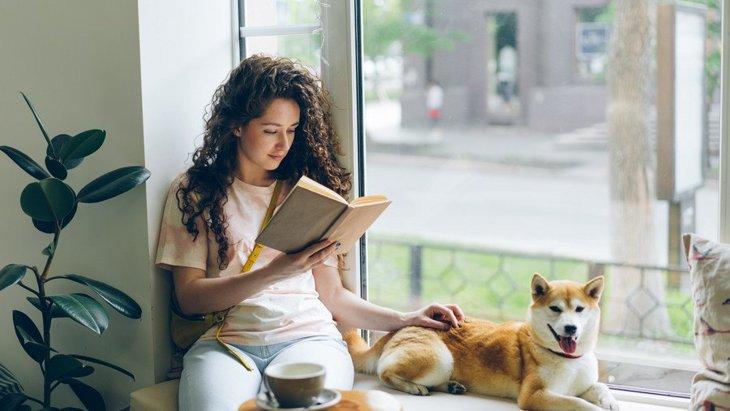 犬が『心地よい』と感じる瞬間とは?