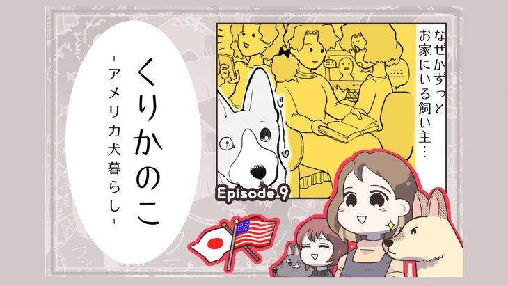 くりかのこ アメリカ犬暮らし【第9話】「犬とコロナ②」