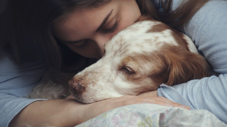 家で愛犬を看取ると決めた時に必要なもの