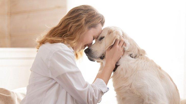 『犬を飼うと結婚できない』と言われる理由は?